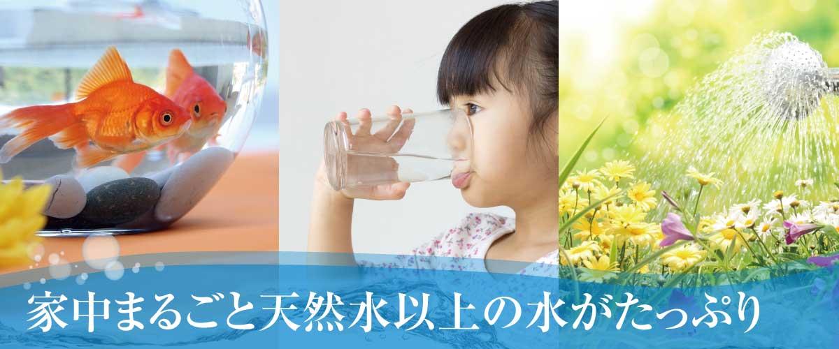 家中天然水以上の水がたっぷり